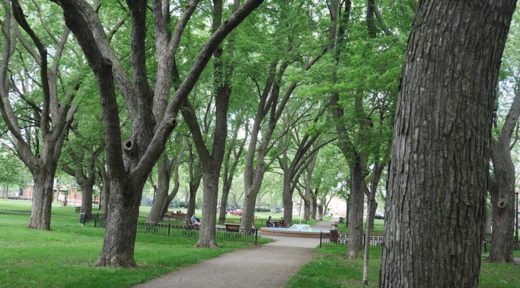 Baldwin Park And Pool Aczoom